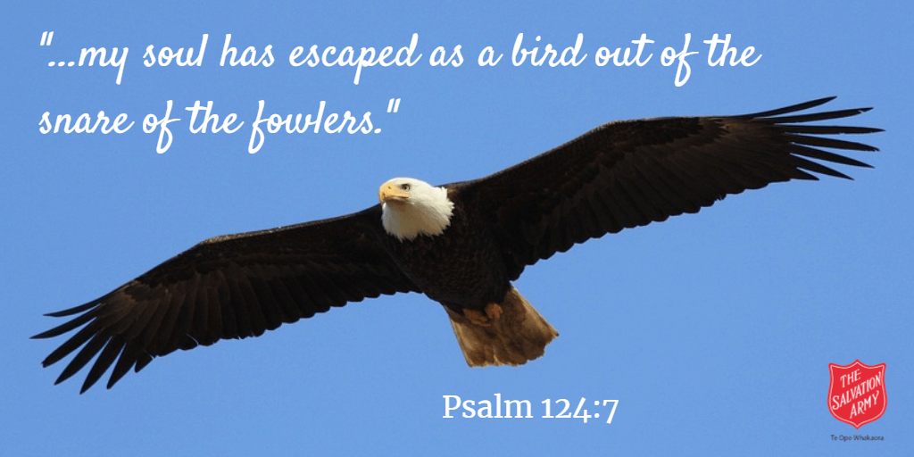 Psalm 124-7 Eagle Flying Cover Banner | Hutt City Corps